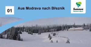 DE breznik_hlavicka