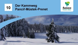 10_DE_pancir_mustek_hlavicka